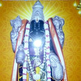தன்வந்த்ரி பீடத்தில் சகல ஐஸ்வர்யம் தரும் சதசண்டி யாகம்
