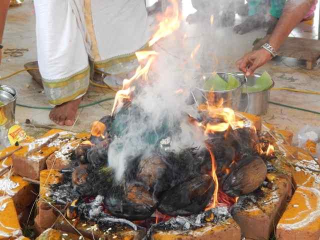 Shri Agathiyar Lopamudra Homam at Shri Thulaseeshwarar Temple Part 3