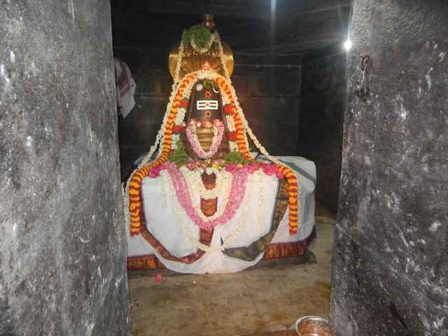 Shri Agathiyar Lopamudra Homam at Shri Thulaseeshwarar Temple Part 4