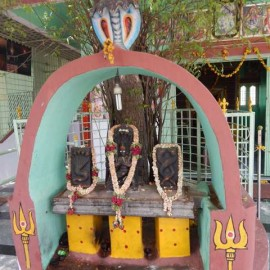 Hosur Malli Mariamman Temple